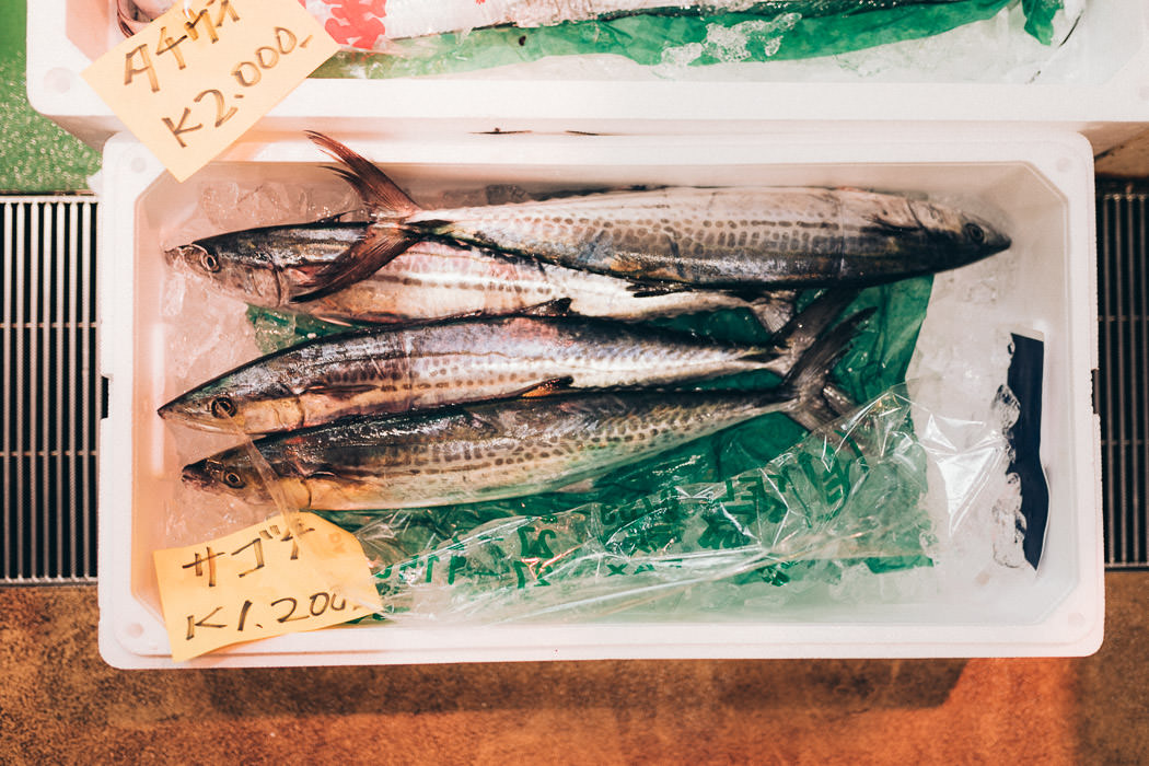 Fischarten in Tokio