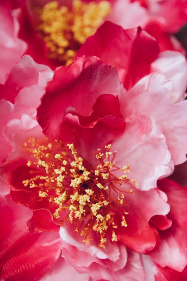 Bukittinggi flowers